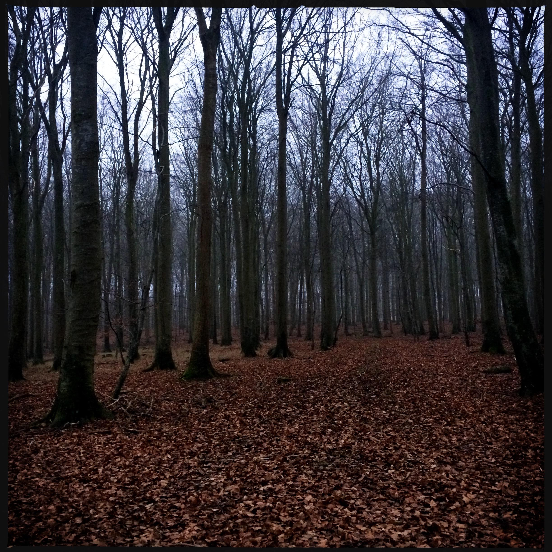 http://www.mathildewalterclark.com/files/gimgs/331_hipstamaticphoto-472228171958820.jpg